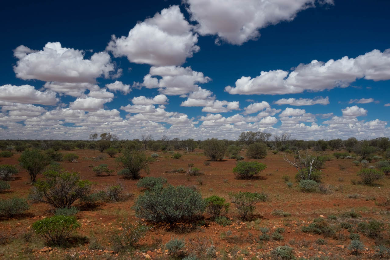 An outback roadtrip can be beautiful in surprising ways.