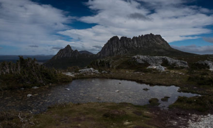 The Overland Track: Mountains, Wombats and Wallabies