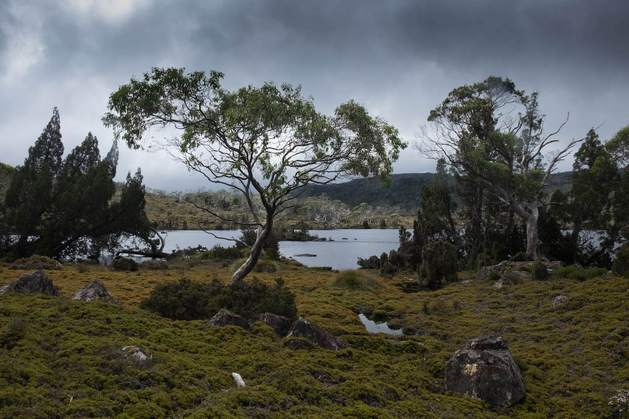 Hiking the overland track takes you past lake windermere